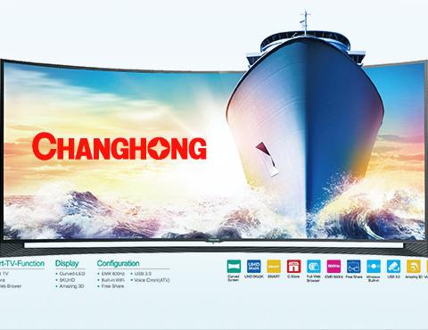 广东长虹电子有限公司网站建设项目--互诺科技