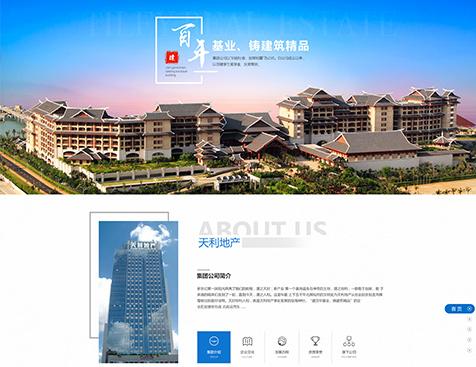 深圳天利地产集团有限公司网站建设项目--互诺科技