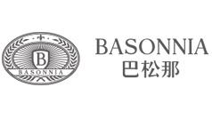 东莞巴松那化妆品商贸有限公司网站建设项目