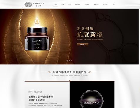 东莞巴松那化妆品商贸有限公司网站建设项目--互诺科技