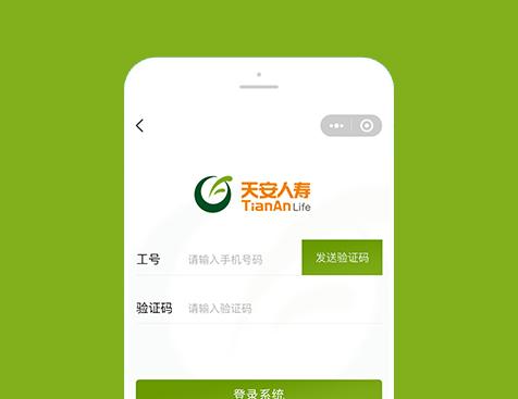 天安人寿保险股份有限公司广东分公司小程序网站建设项目--互诺科技