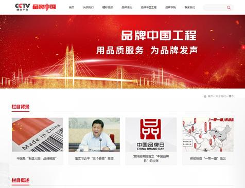 北京世纪中广文化传媒有限责任公司网站建设项目--互诺科技