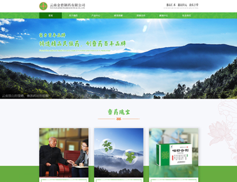 云南金碧制药有限公司网站建设项目--互诺科技