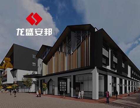 广东龙盛安邦房地产开发有限公司网站建设项目--互诺科技