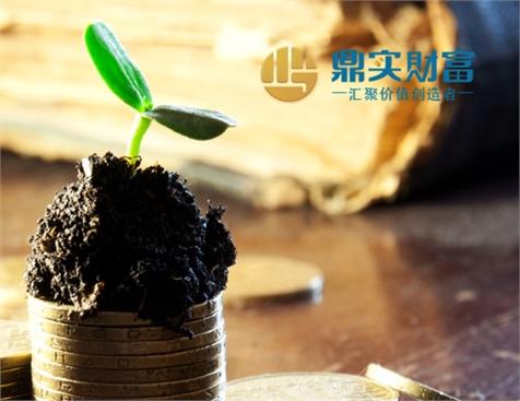 广州市好投投资管理有限公司网站建设项目
