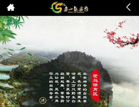 李小龙乐园网站建设项目