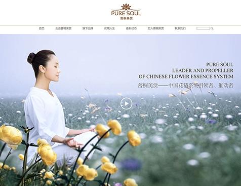 广州菩桐美赏贸易有限公司网站建设项目--互诺科技