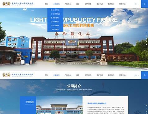 金华永和氟化工有限公司网站建设项目--互诺科技