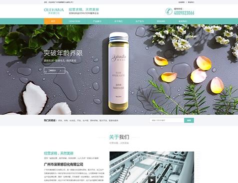 广州众微电子商务有限公司网站建设项目