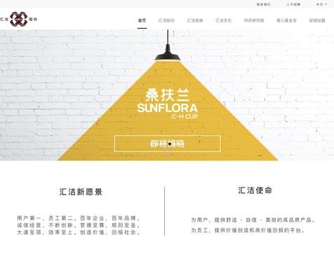 深圳汇洁集团股份有限公司网站建设项目--互诺科技
