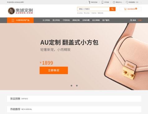 广州贯源皮具有限公司网站建设项目-互诺科技