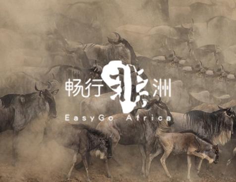 深圳畅行非洲科技有限公司网站建设项目--互诺科技