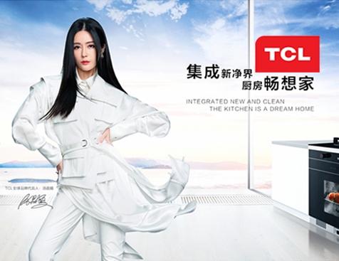 TCL集团网站建设项目