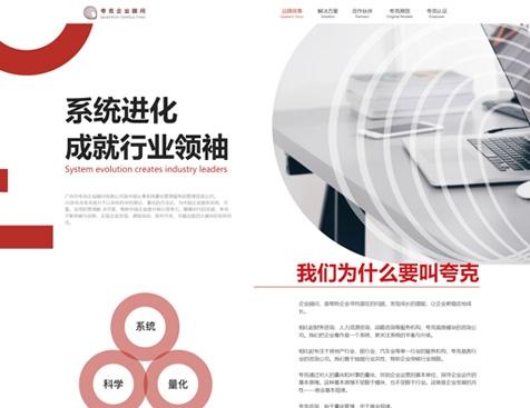 广州市夸克企业顾问有限公司网站建设项目--互诺科技
